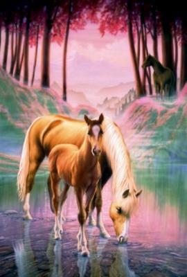 chevaux21.jpg